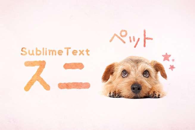 もう同じコードを繰り返さない!SublimeTextのスニペットで快適コーディング!