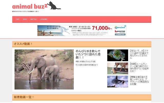 animal buzz