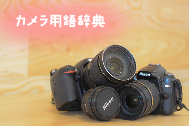 永久保存版!デジタル一眼レフ初心者のためのカメラ用語辞典