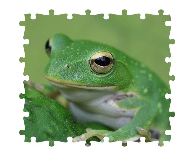Photoshopでジグソーパズル風のデザインを作る方法 | 株式会社LIG - No.5