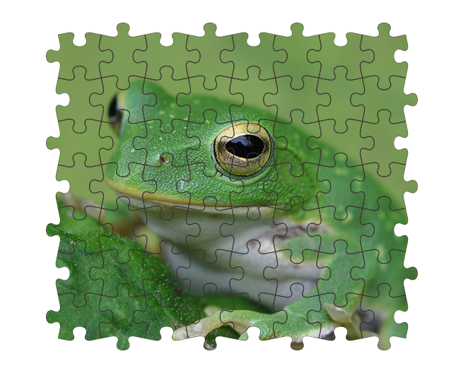 Photoshopでジグソーパズル風のデザインを作る方法 | 株式会社LIG - No.7