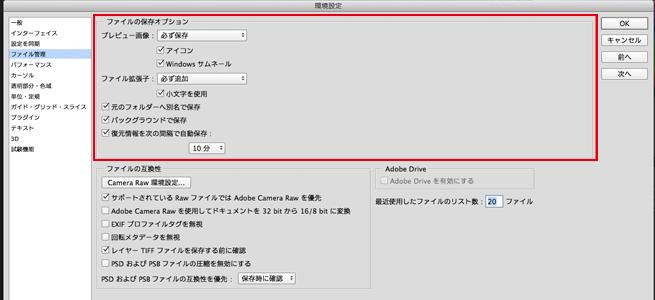 2、「ファイルの保存オプション」というくくりの中の「プレビュー画像」を「必ず保存」に設定します。