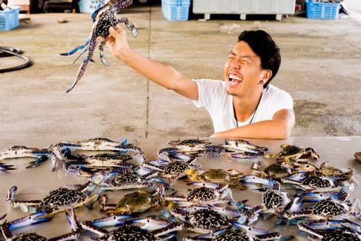 高知県の港町で漁師体験をして、カニをたらふく食べてベロベロになった話。のアイキャッチ