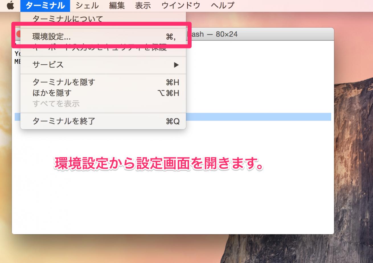 terminal_1