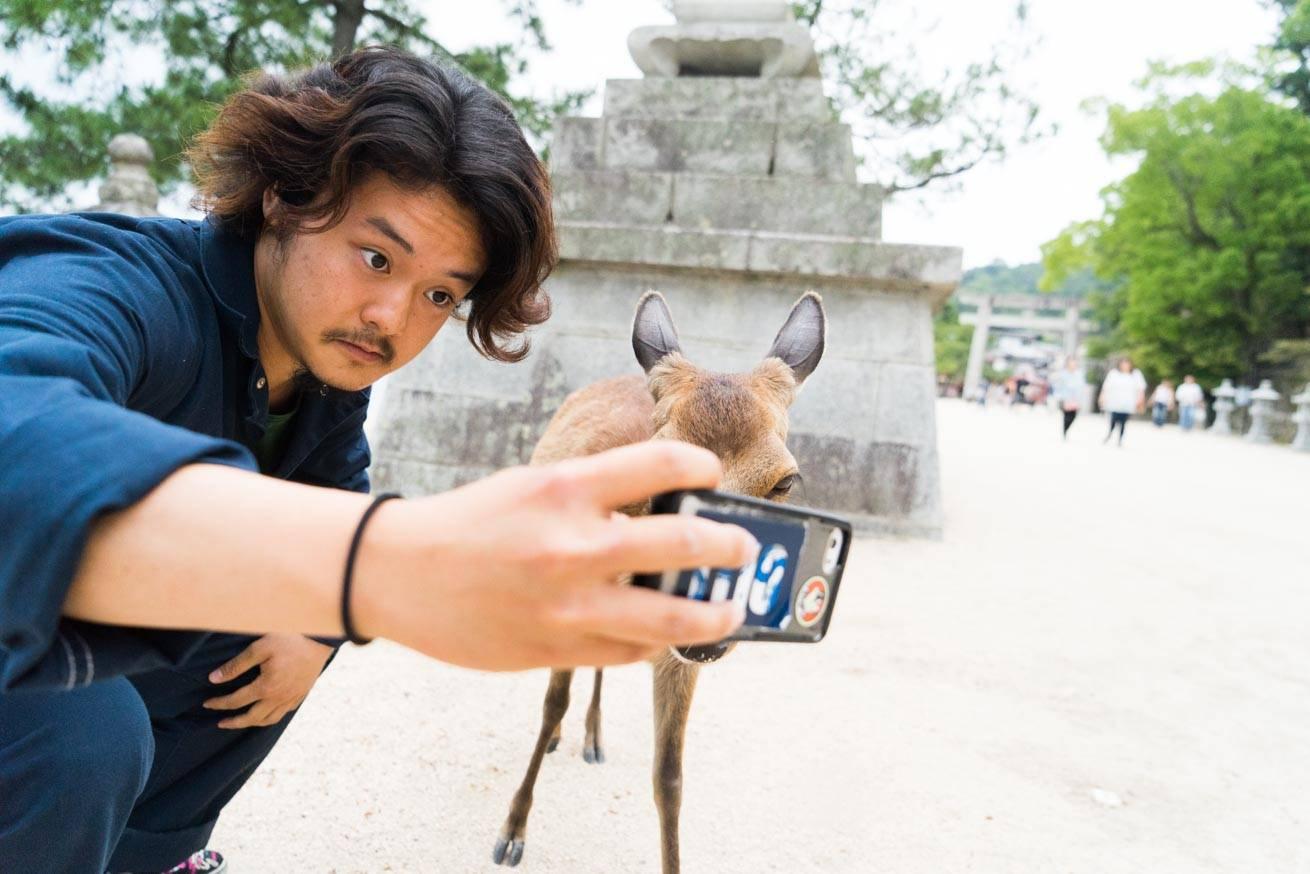 286558広島県でSUPを体験し、宮島で鹿と自撮りをしました。のアイキャッチ