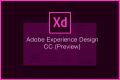 ついに「Adobe XD」の日本語版リリース!Webサイト制作がはかどり過ぎて楽しいのアイキャッチ