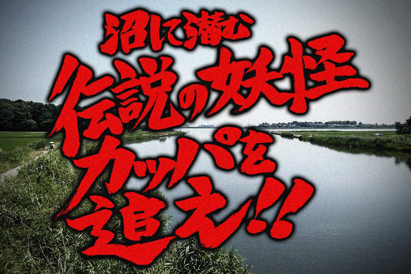 287373沼に潜む伝説の妖怪「カッパ」を追え!伝説は実在するか調べてみたのアイキャッチ